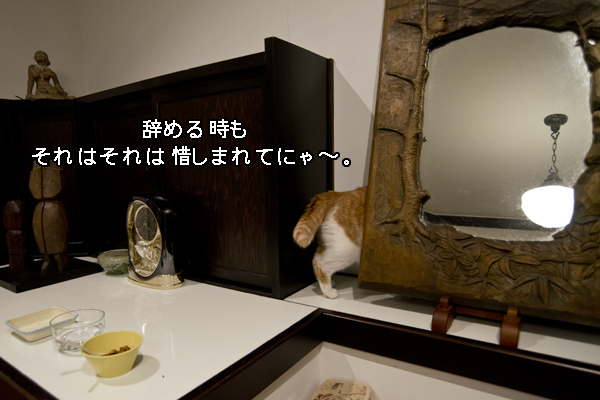 b0141397_1119387.jpg
