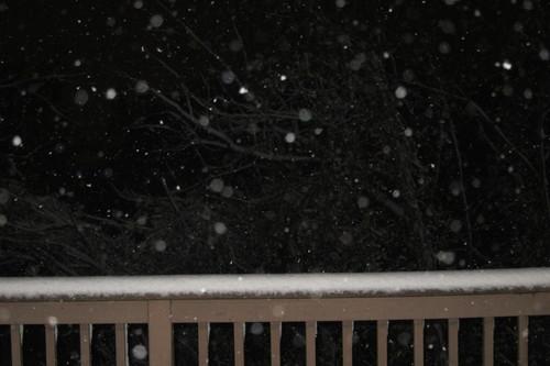初雪・・・ですが。_d0240098_12491312.jpg