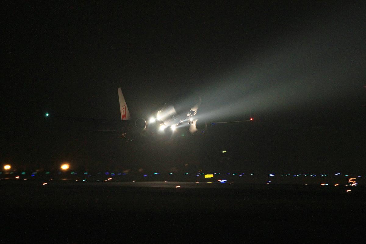 JAL(B-737) 鶴丸_b0044115_1139027.jpg