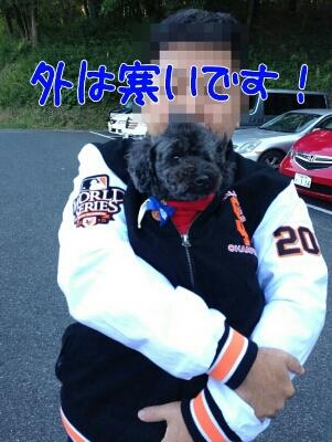 b0236618_0342632.jpg