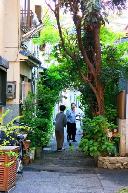 野田界隈の路地3_c0229455_222828.jpg