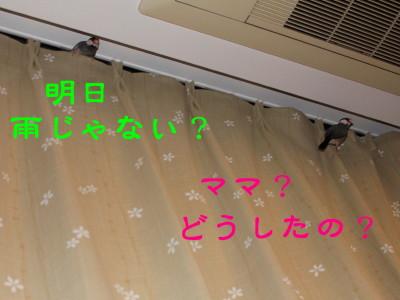 b0158061_22425776.jpg