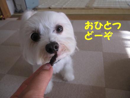 b0193480_16175436.jpg