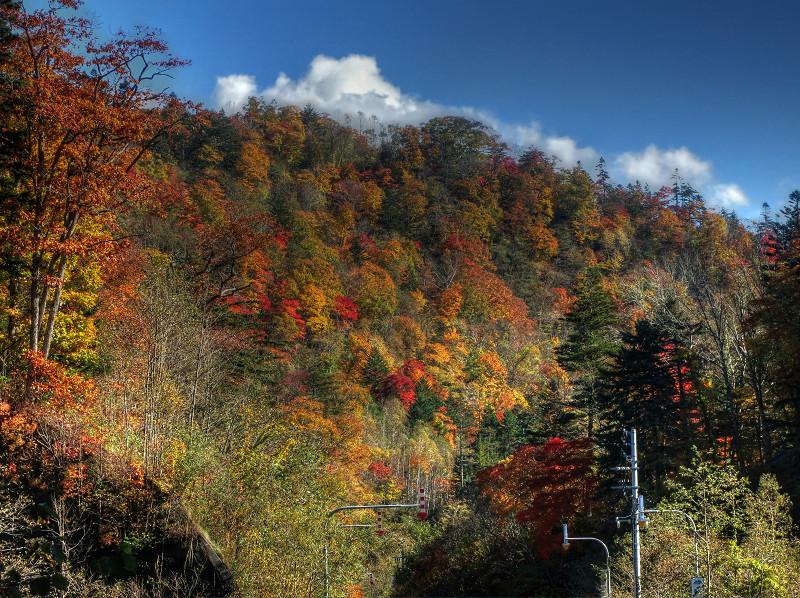 2012/11/26 恵庭渓谷  _a0160581_9473644.jpg