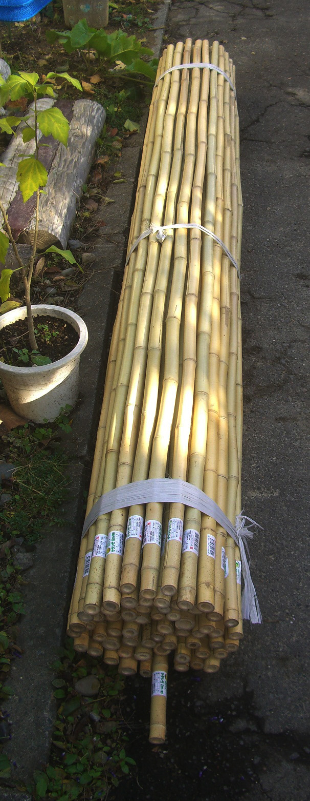 竹と飯と塗装_f0034392_1728946.jpg