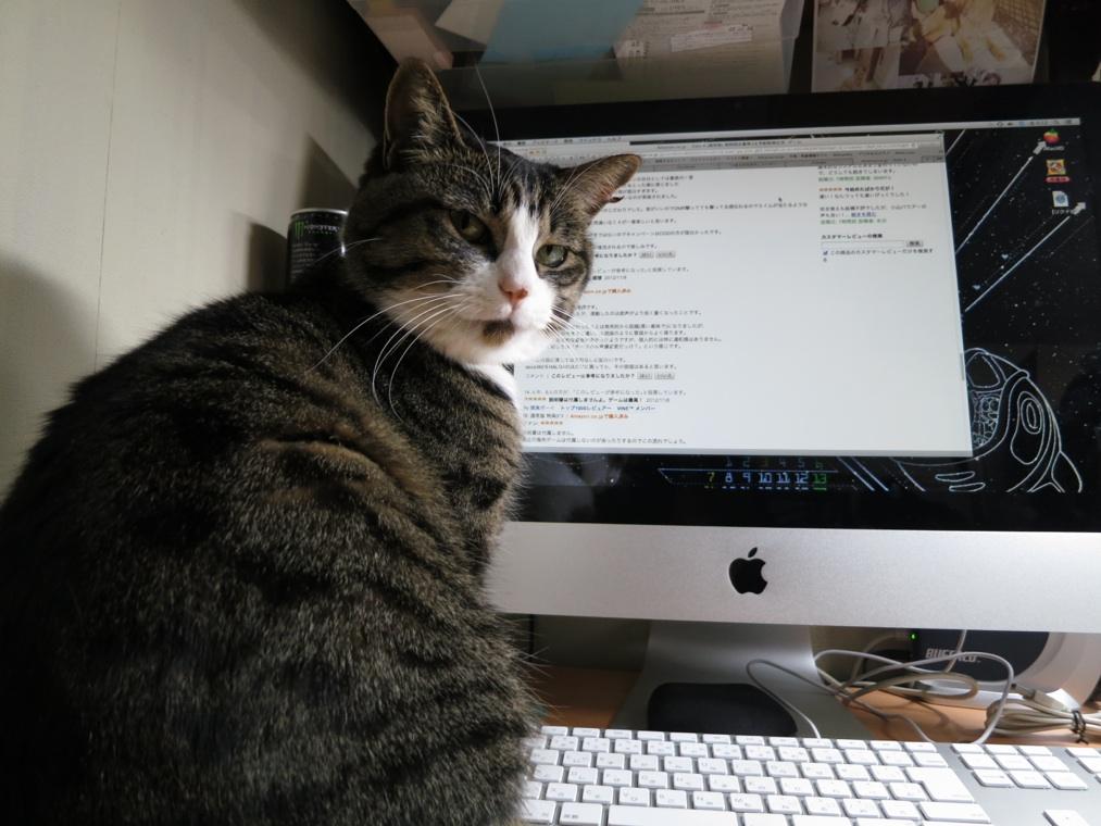 【猫】ちょっとしたこと_f0141609_214823.jpg