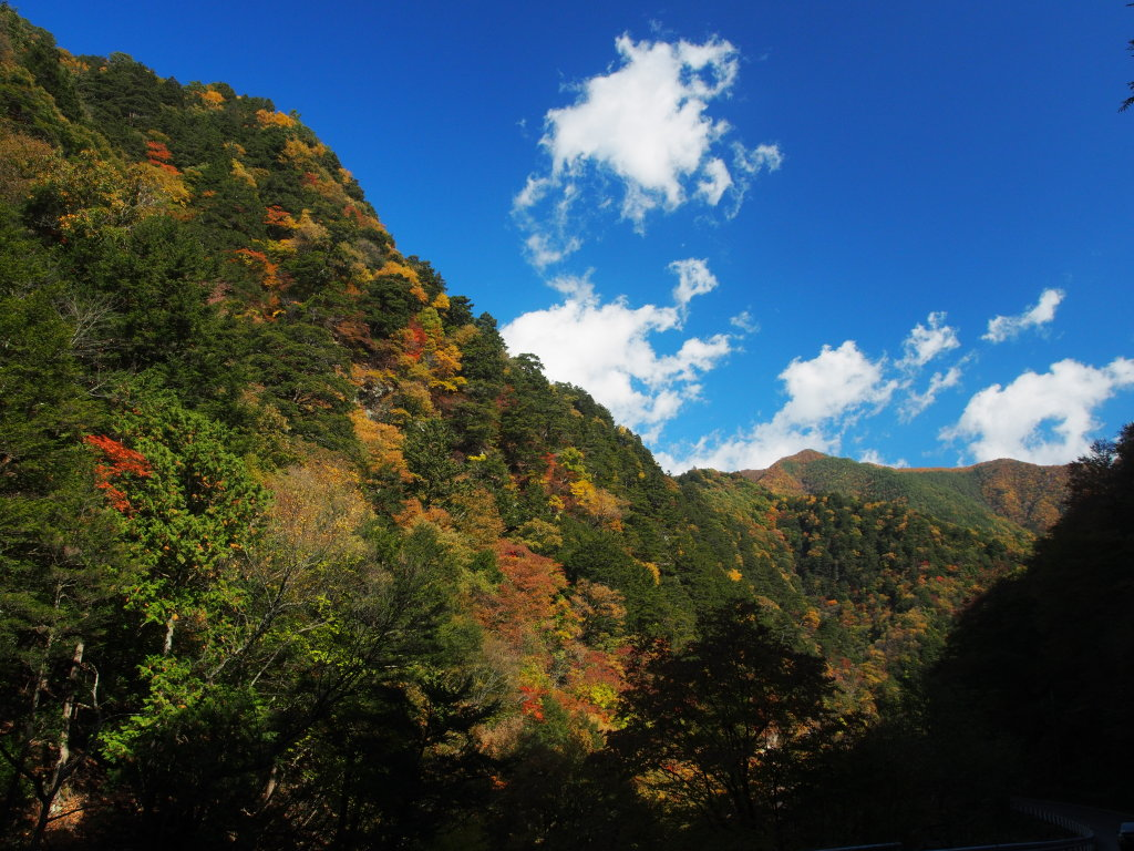 丹波山渓谷の紅葉_d0192516_11163869.jpg