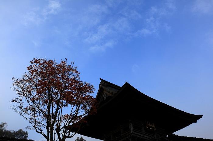 郷路岳_a0294534_2140466.jpg