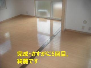 f0031037_2034670.jpg