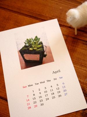 2013年カレンダー_c0199544_2242897.jpg