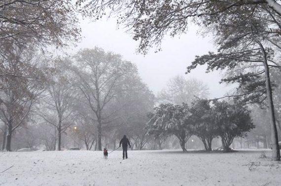 ②.ハリケーンと吹雪からのギフト?!_b0173754_204024.jpg