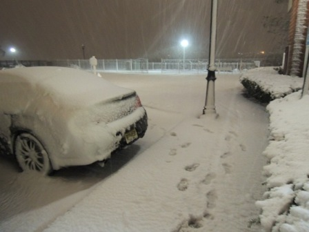 ②.ハリケーンと吹雪からのギフト?!_b0173754_212342.jpg