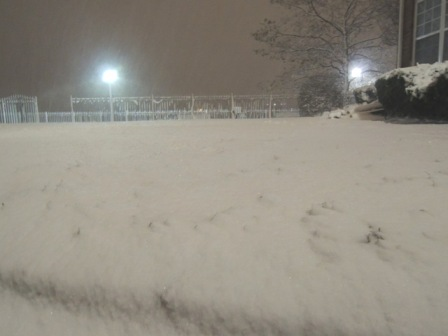 ②.ハリケーンと吹雪からのギフト?!_b0173754_214458.jpg