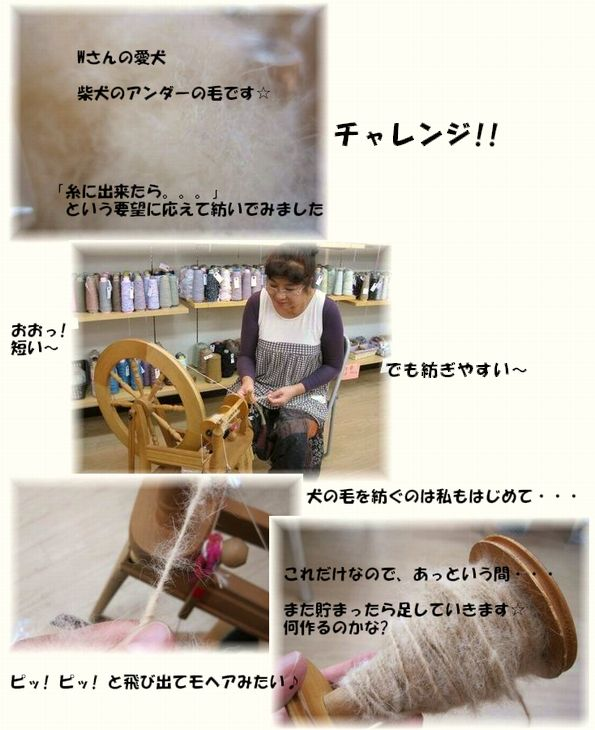 ムーラン式「たて絣」 &  柴犬の毛を紡ぐ ~旭川マルカツ店~_c0221884_20261542.jpg