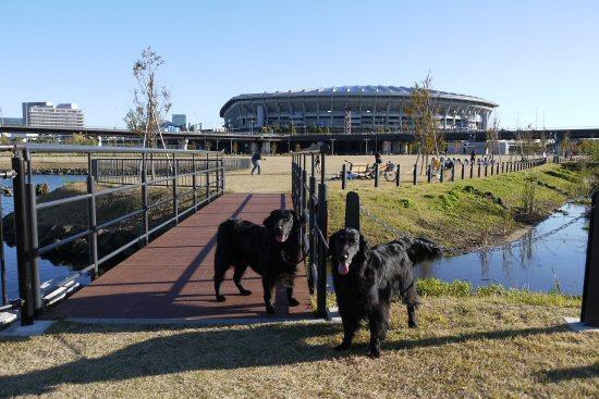 新横浜公園へお散歩♪_c0050400_1385568.jpg