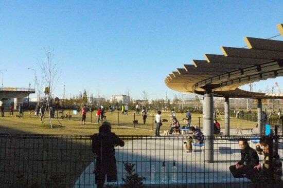 新横浜公園へお散歩♪_c0050400_139935.jpg