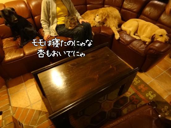 f0064906_160139.jpg