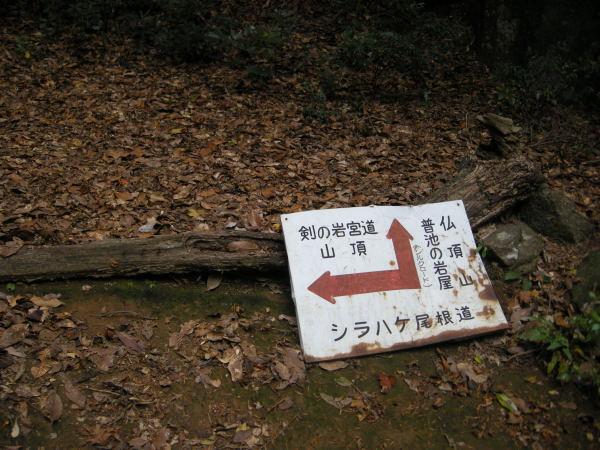 f0196109_20115744.jpg