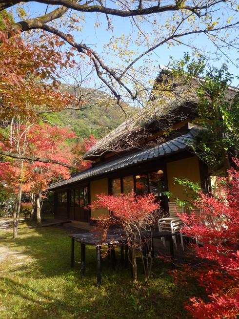 錦の秋。。。祈り満ちた 日曜日。。。.♡*† *・。・。+_a0053662_13153225.jpg
