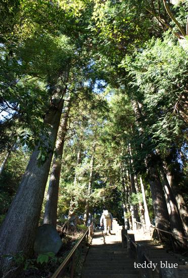 fall hiking in Oyama  秋の大山ハイキング_e0253364_1365734.jpg