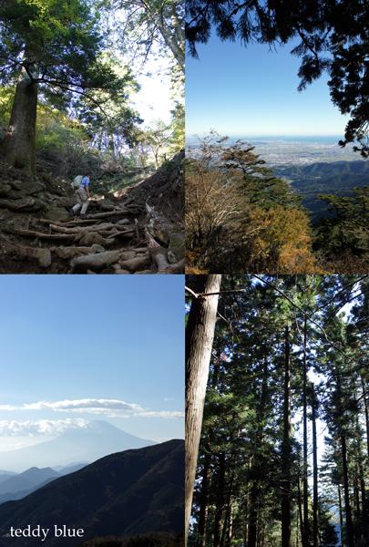 fall hiking in Oyama  秋の大山ハイキング_e0253364_137465.jpg