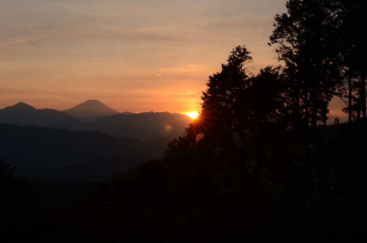 山の贈り物_b0194880_20452252.jpg