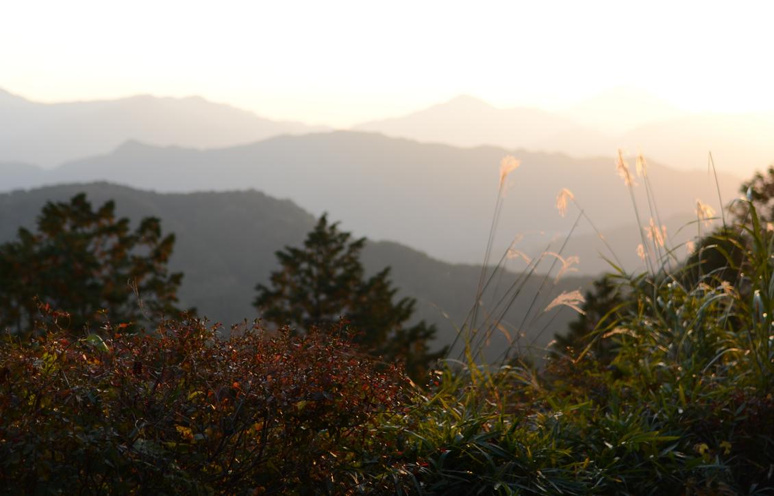 山の贈り物_b0194880_20493176.jpg