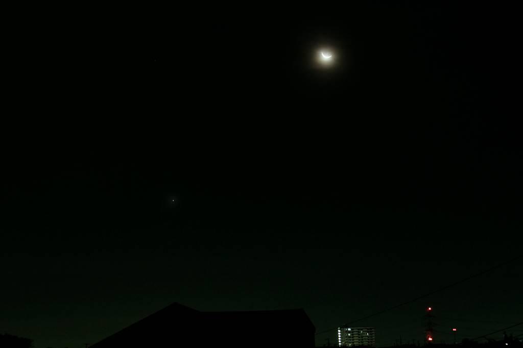 カワセミ兄弟喧嘩/今朝の眉月と金星/Windows8のムック本_b0024798_20463547.jpg
