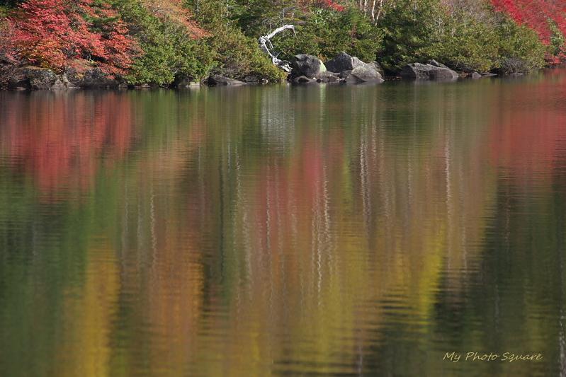 湖面_c0167028_2344277.jpg