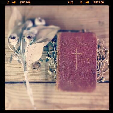 クリスマスの本、冬の本。_e0060555_17251974.jpg