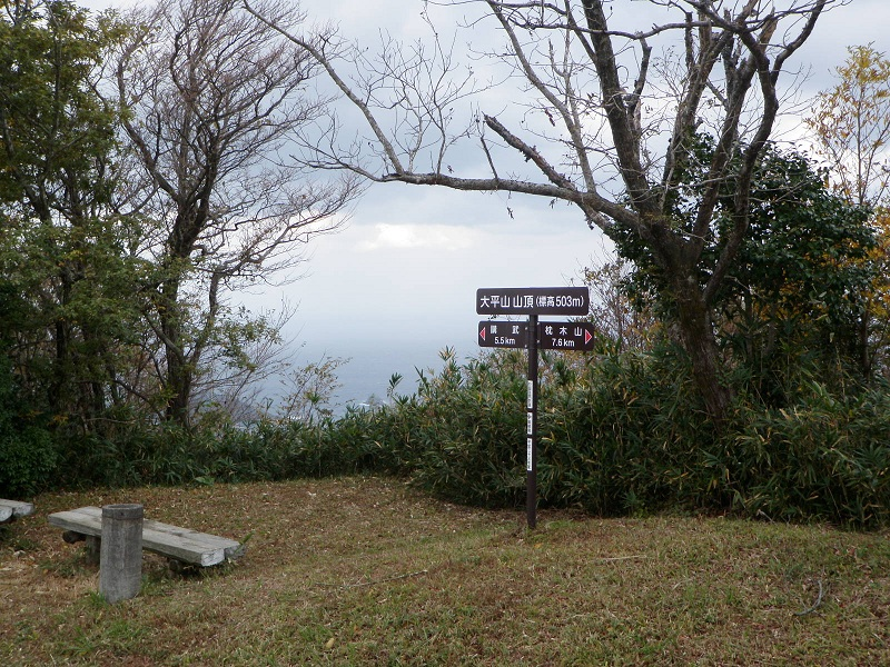 ジョグ登山 「大平山503m」_d0007657_11403336.jpg