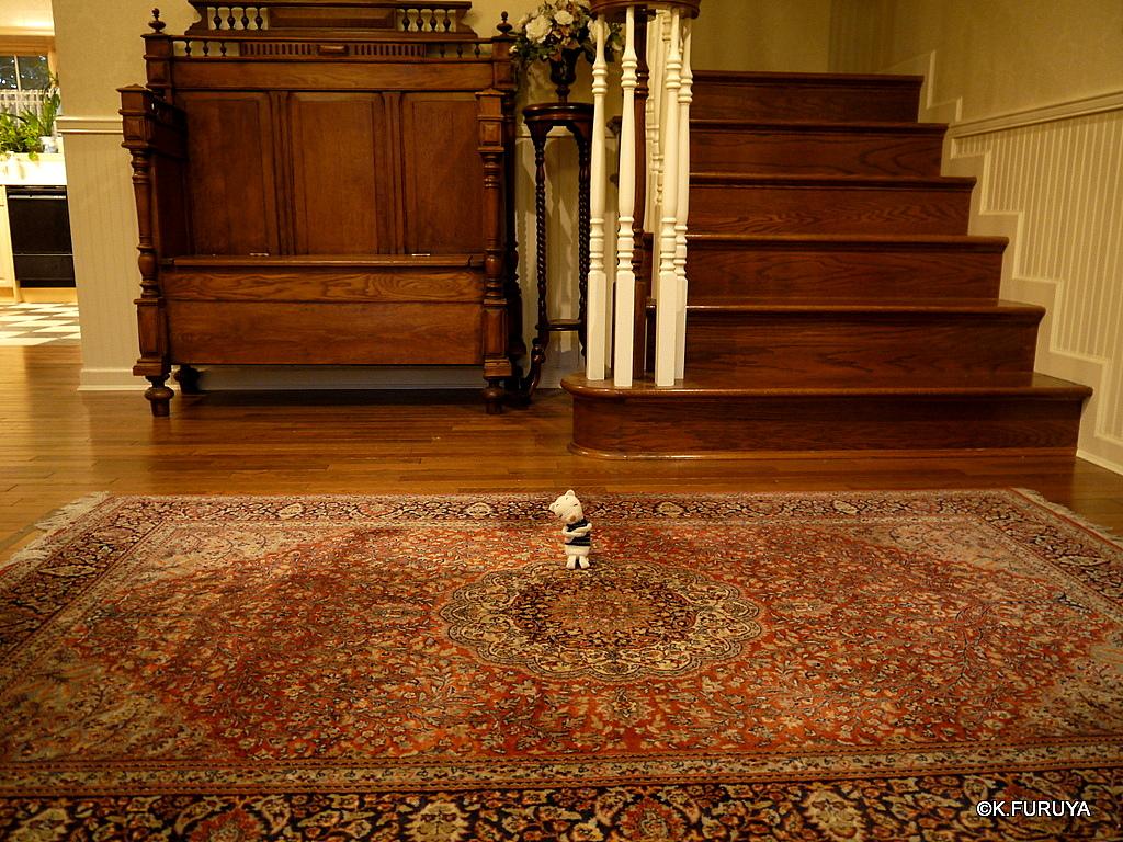 トルコ旅行記 19 カッパドキアの絨毯屋さん_a0092659_19321174.jpg