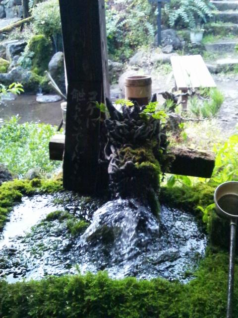 阿蘇神社とetuとtien tienと山ドライブ_c0246783_22384575.jpg