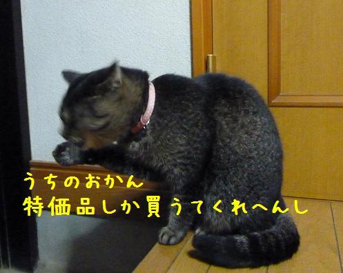 b0138430_914190.jpg