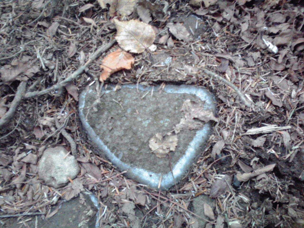 岩の凍り初め_e0155231_6355322.jpg