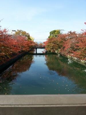 京都へ_c0204289_1339828.jpg