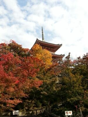 京都へ_c0204289_13404415.jpg