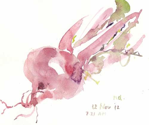 故郷の野菜を描く_d0115092_1751369.jpg