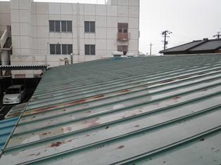 屋根塗装_b0232198_1022351.jpg