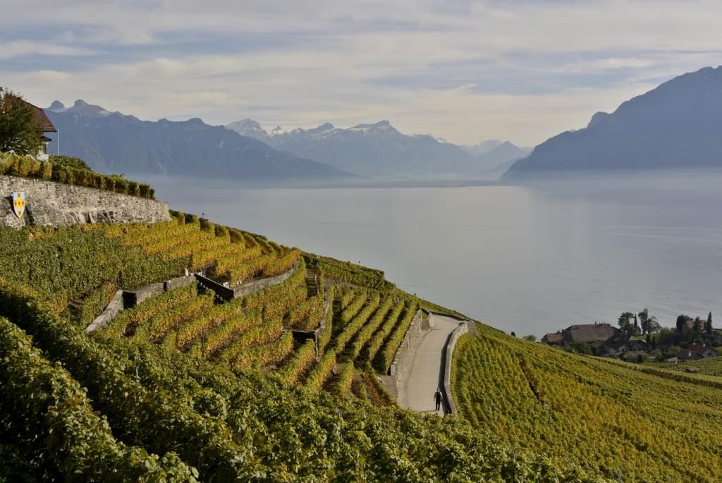 スイス紀行14:レマン湖周辺を_a0148206_16473438.jpg