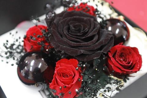 女子高生のみなさんとお花を_e0201009_1657387.jpg