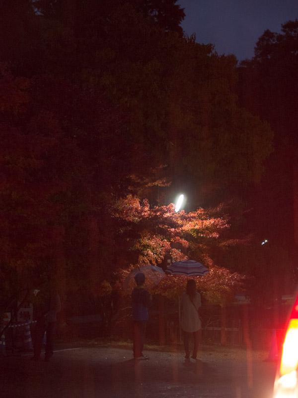 旧閑谷学校ライトアップ 2012.11.11_c0021726_1912010.jpg
