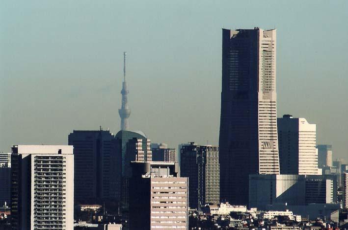 残念!スカイツリー霞み、富士見えず:北鎌倉ウオッチング_c0014967_18513680.jpg