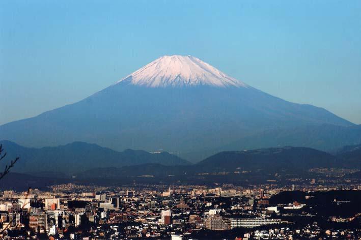 残念!スカイツリー霞み、富士見えず:北鎌倉ウオッチング_c0014967_18515334.jpg