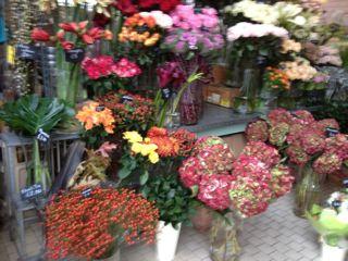 花で溢れたLONDON_f0061394_2027150.jpg