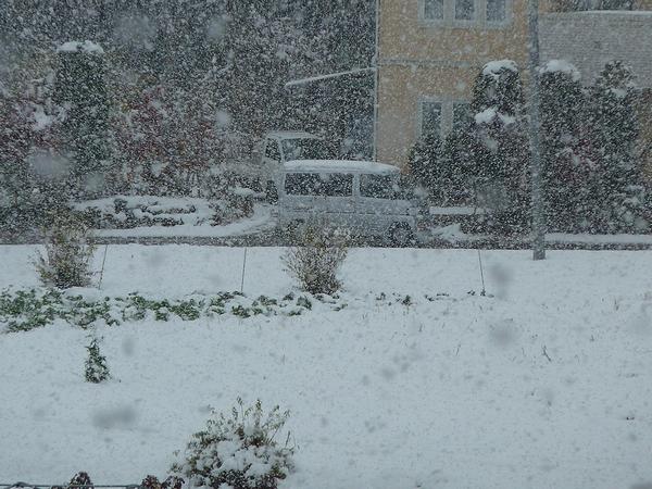 雪だど~~~!_c0127703_2247366.jpg