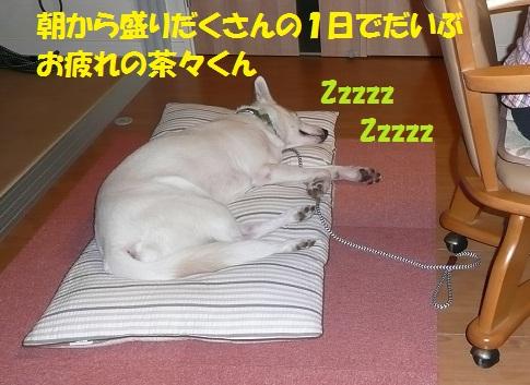 f0121712_6171020.jpg