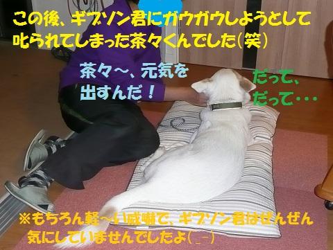 f0121712_641073.jpg