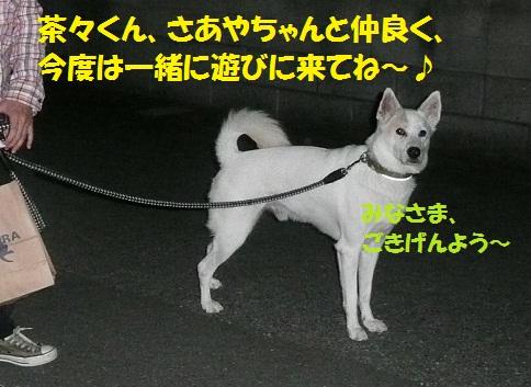 f0121712_7281546.jpg