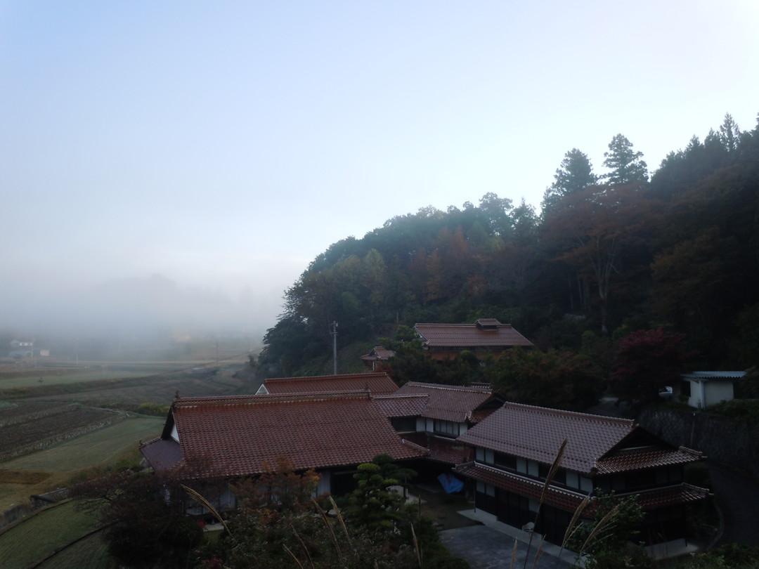 2012年10月、11月 『広島から、鹿児島へ、そして憧れの屋久島宮之浦岳』_c0219616_19172443.jpg